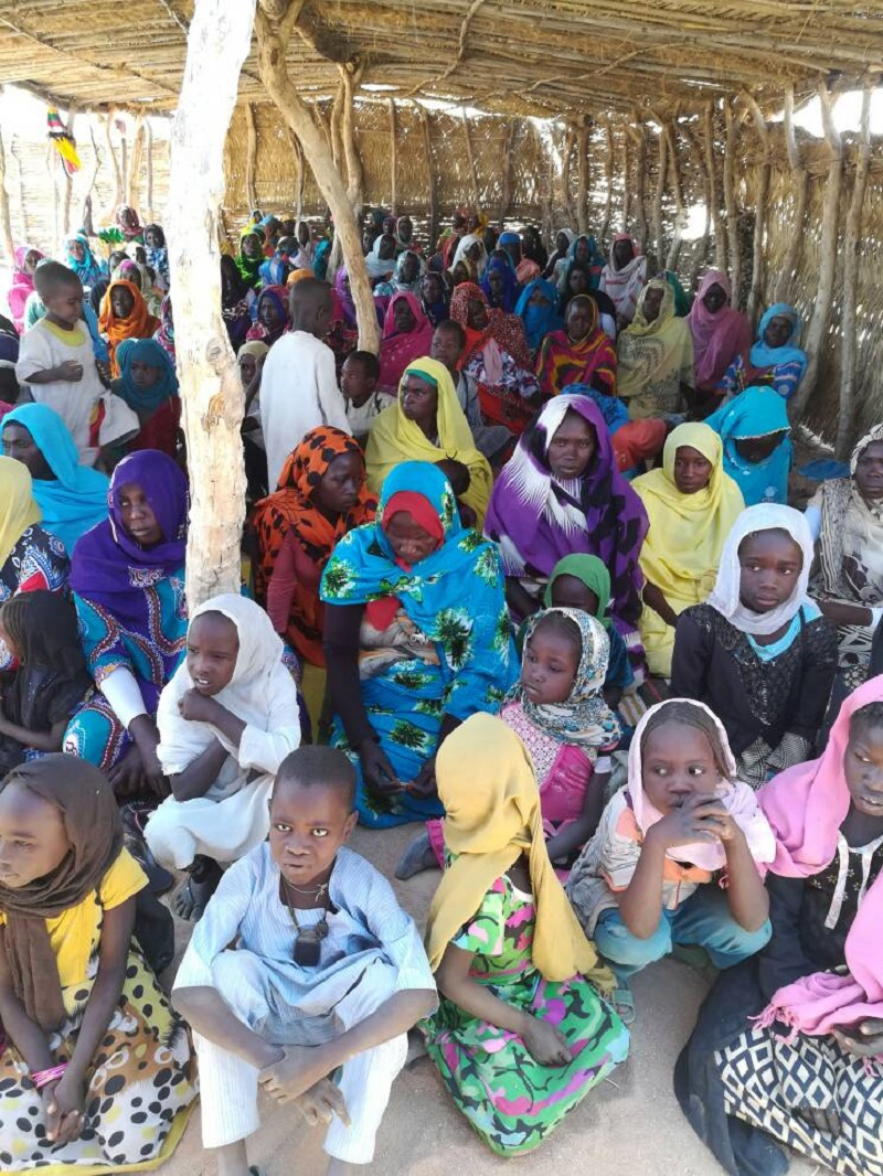 Commissioner calls for concerted efforts on provision of  requirements  of voluntary repatriation in Darfur