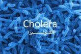 Activist warns of outbreak of cholera, malaria and hemorrhagic fever