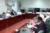 اللجنة القومية للموسم الزراعي تستعرض موقف حصاد محصول القمح